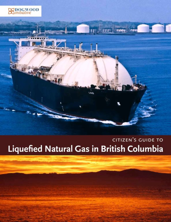 LNG_Report_Cover_Web